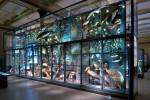 naturkundemuseum2-41256988e17e7e44539576a872624e70